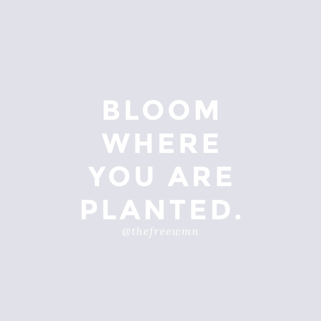 Bloom Where You Are Planted | thefreewoman.com